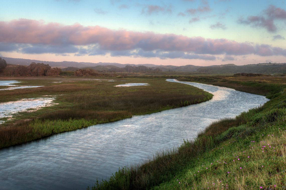 Pescadero Marsh along the Sequoia Audubon Trial - Photo by Kevin Henney