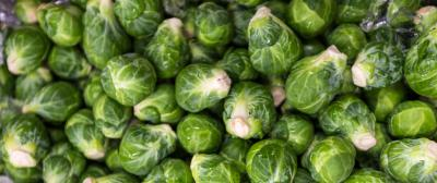 Brussels Sprouts from Half Moon Bay