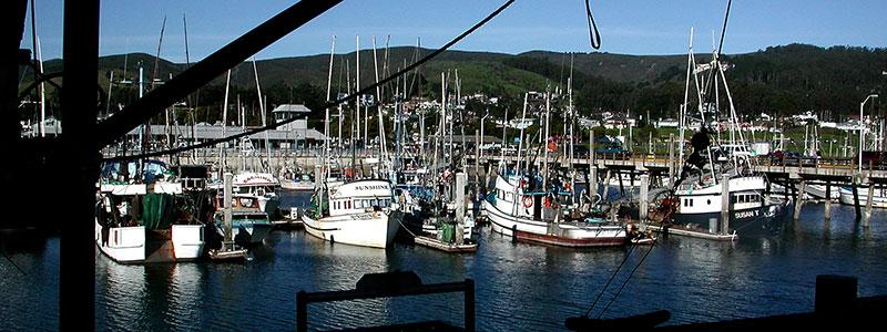 10 Deep Sea Fishing Trips