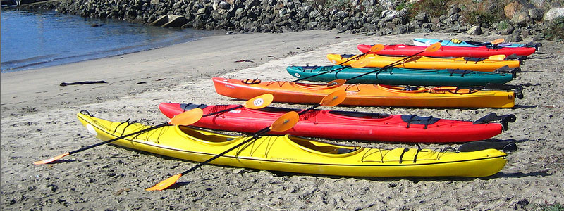 Bay Area Sea Kayaking