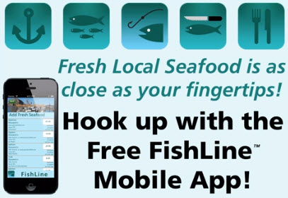 fishline_graphic_mobile